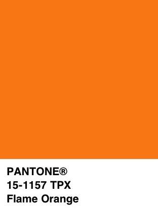 dominique-ropion-soul-costume-national-arancione
