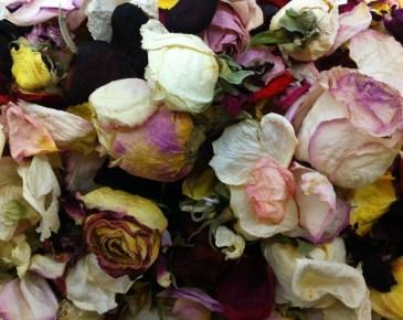 profumo-marlowe-Jardins-D-Écrivains-fiori-secchi