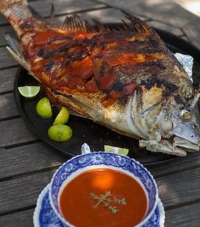 Fueguia-1833--Black-Drum-Full-Fish-and-Sauce-Cooked