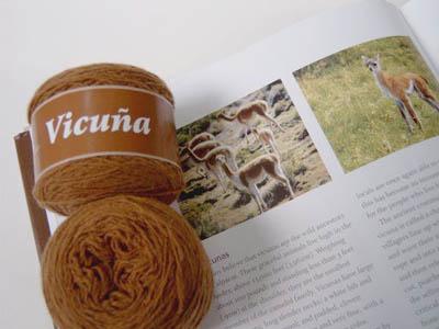 Fueguia-1833-Vicuna18FBlog