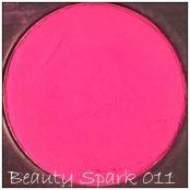 Generic Blush Palette blush 011