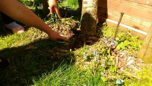 Goûter Compost au jardin Harmonie @ Jardin Harmonie
