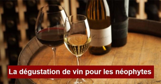 Blog vin Beaux-Vins dégustation apprendre conseils oenologie