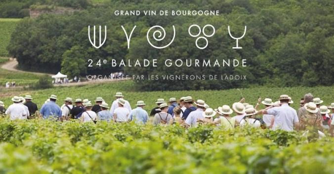Blog Vin Beaux-VIns oenologie dégustation balade gourmande ladoix