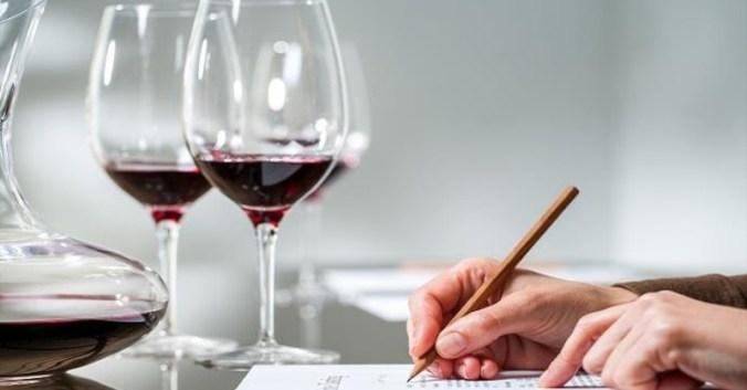 blog vin Beaux-Vins apprendre déguster dégustation conclusion vins