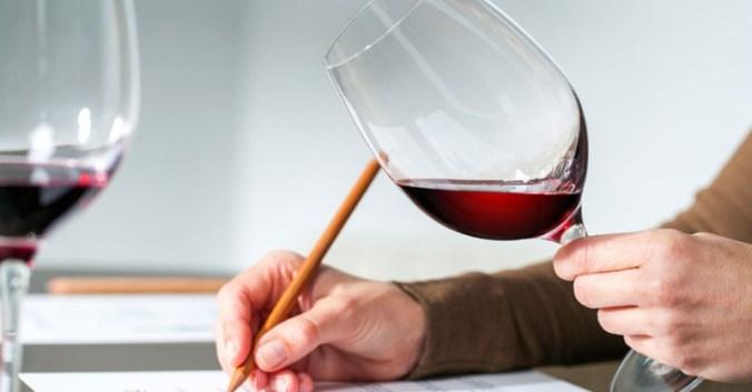 blog vin Beaux-Vins apprendre regarder déguster dégustation vins
