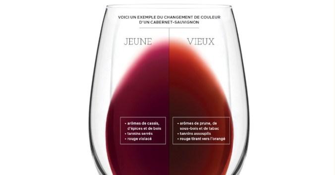 blog vin Beaux-Vins apprendre visuel jeune vieux déguster dégustation vins
