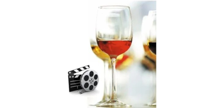 Vins & Cinema – Universite du vin a Lyon