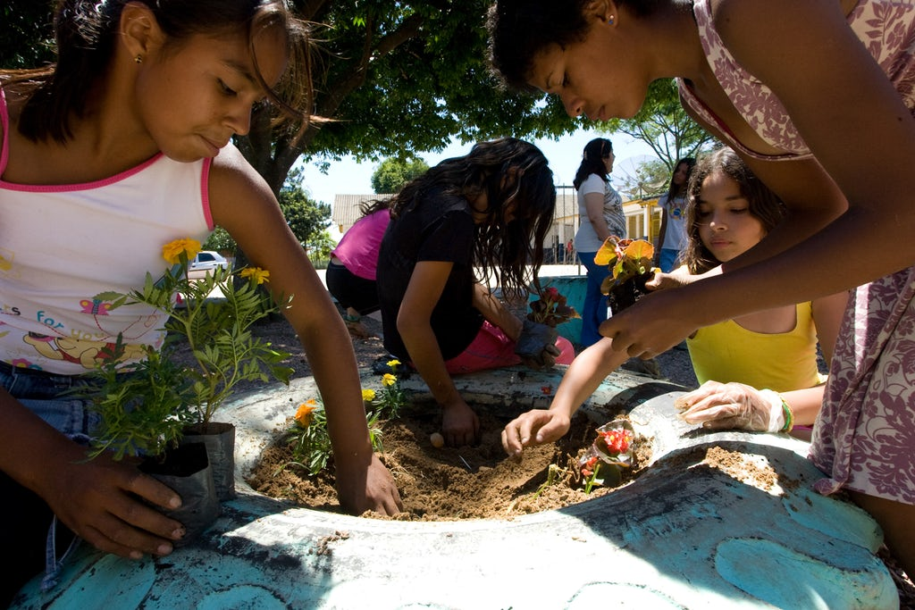 youth planting a garden