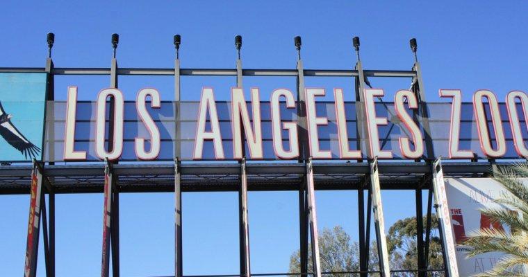 Sunny in California: Los Angeles Zoo
