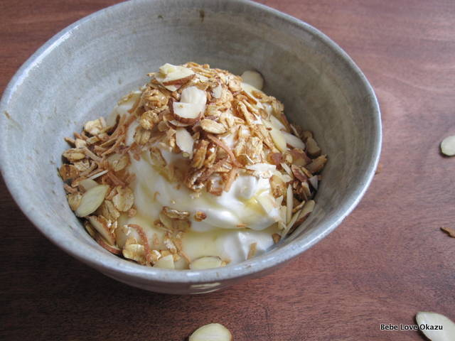 Image result for yogurt with granola