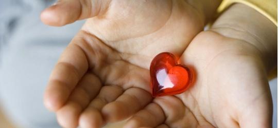 szívbetegség, szív, gyerekek