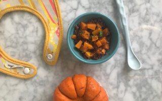 pumpa barnmat med enkla på recept till din bebis