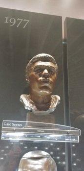 2017-08-22-Pro Football Hall of Fame (14)