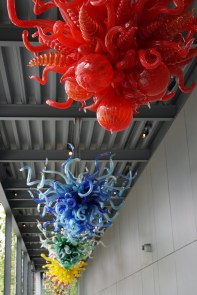 2017-09-09-Chihuly Garden and Glass (15)