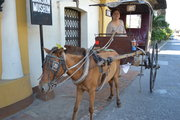 Back home in my old country, the horse drawn cart is pretty much a mode of transportation for short distances