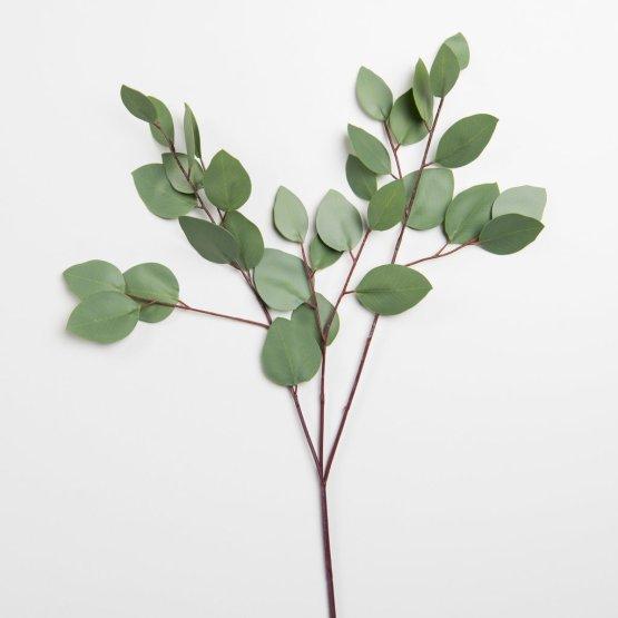 Eucalyptus vape juice