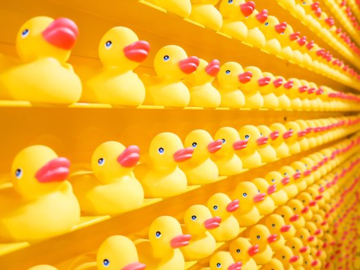 Rubber duckies are actually made of plastic. Photo by JOSHUA COLEMAN on Unsplash