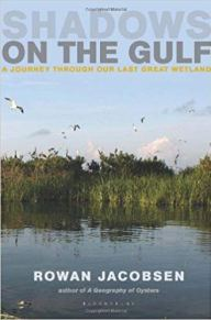 Cover of Shadows on the Gulf book