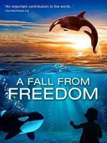 A Fall From Freedom DVD cover
