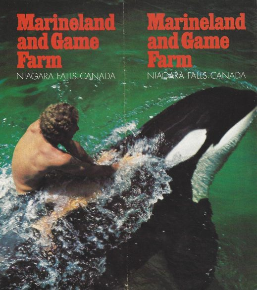 Brochure cover advertising a trainer swimming on top of an orca.