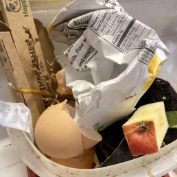 Plastic container holding eggshells, apple cores, paper packaging, and a home compostable plastic toothbrush packaging.