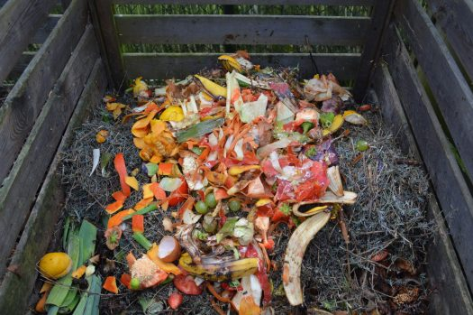 Example of an outdoor open compost bin with many colorful food scraps.