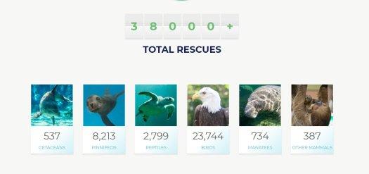 Brief breakdown of SeaWorld's 38,000 rescues, from SeaWorld's website.