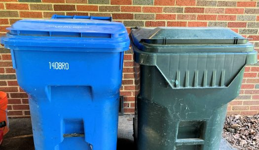 The standard issue City of Chattanooga blue recycling bin and green garbage bin side by side, showing their equal size.