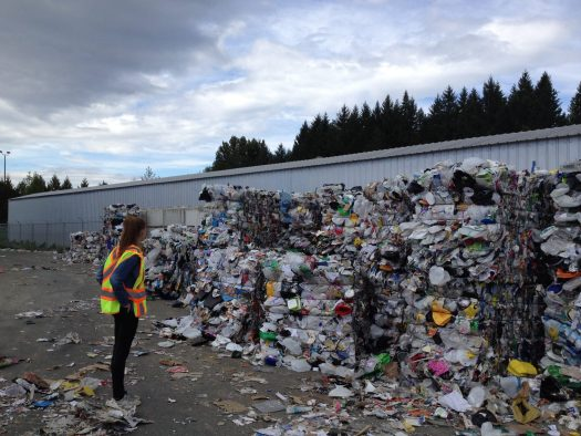 Worker looking at bales of recycling at a recycling center.