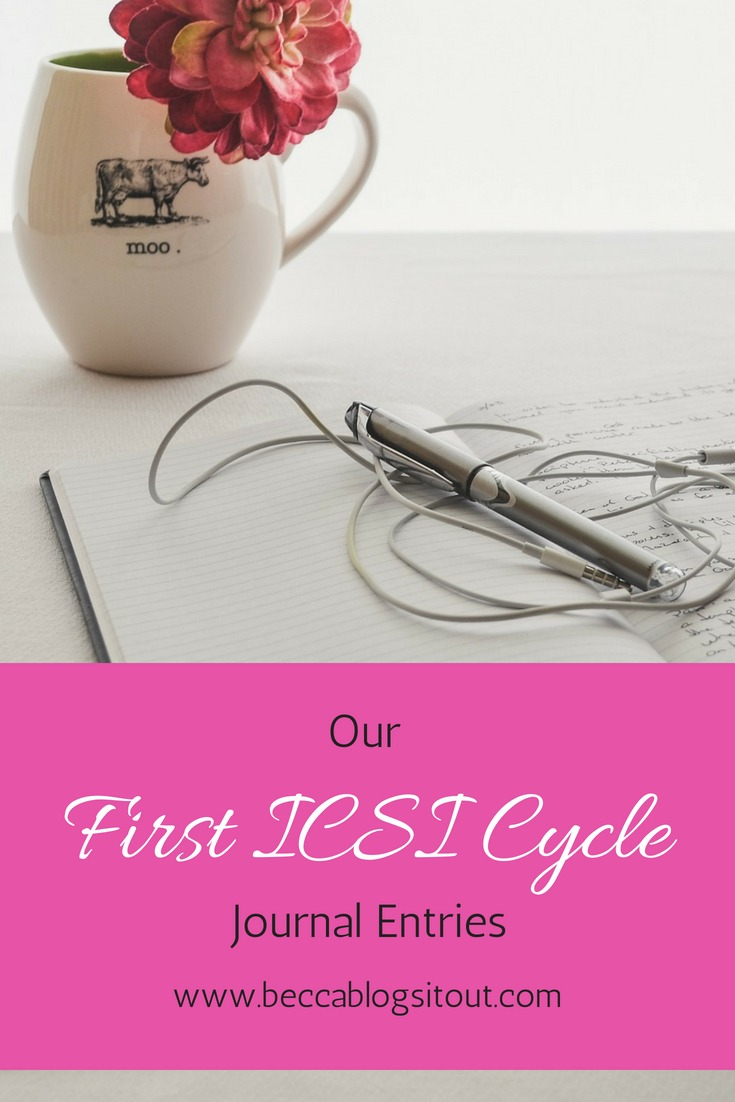 Our First ICSI Cycle Journal Entries