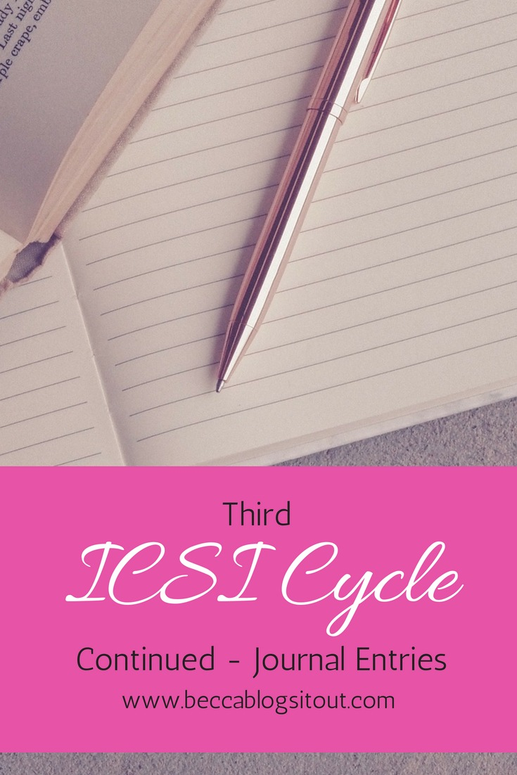 Third ICSI Cycle Continued - Journal Entries