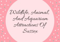 attractions of sussex