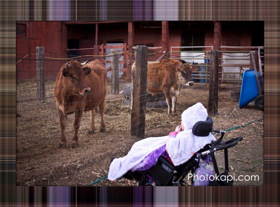 Plaid Photo 1 Done | BeccaBug.com