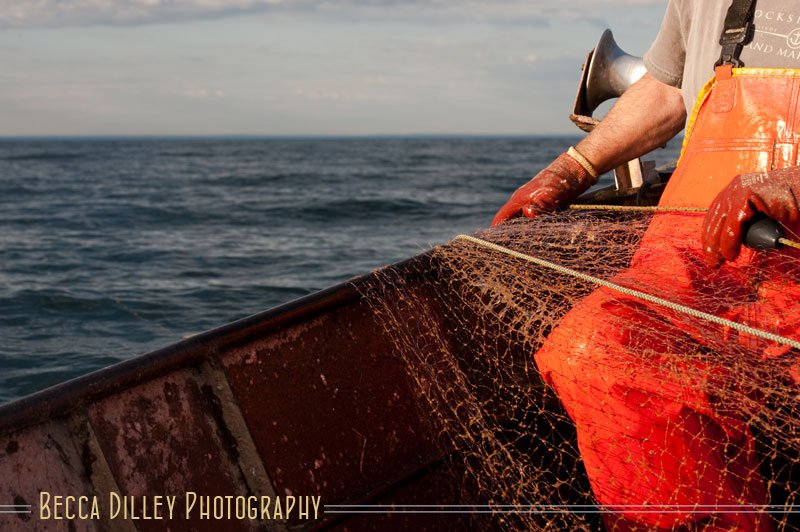 lake superior herring fishing editorial portraits mn