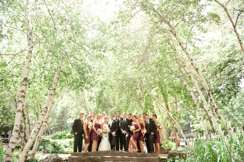 entire wedding party at Mears Park, St Paul