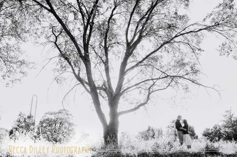minneapolis summer engagement photos with large tree in sun