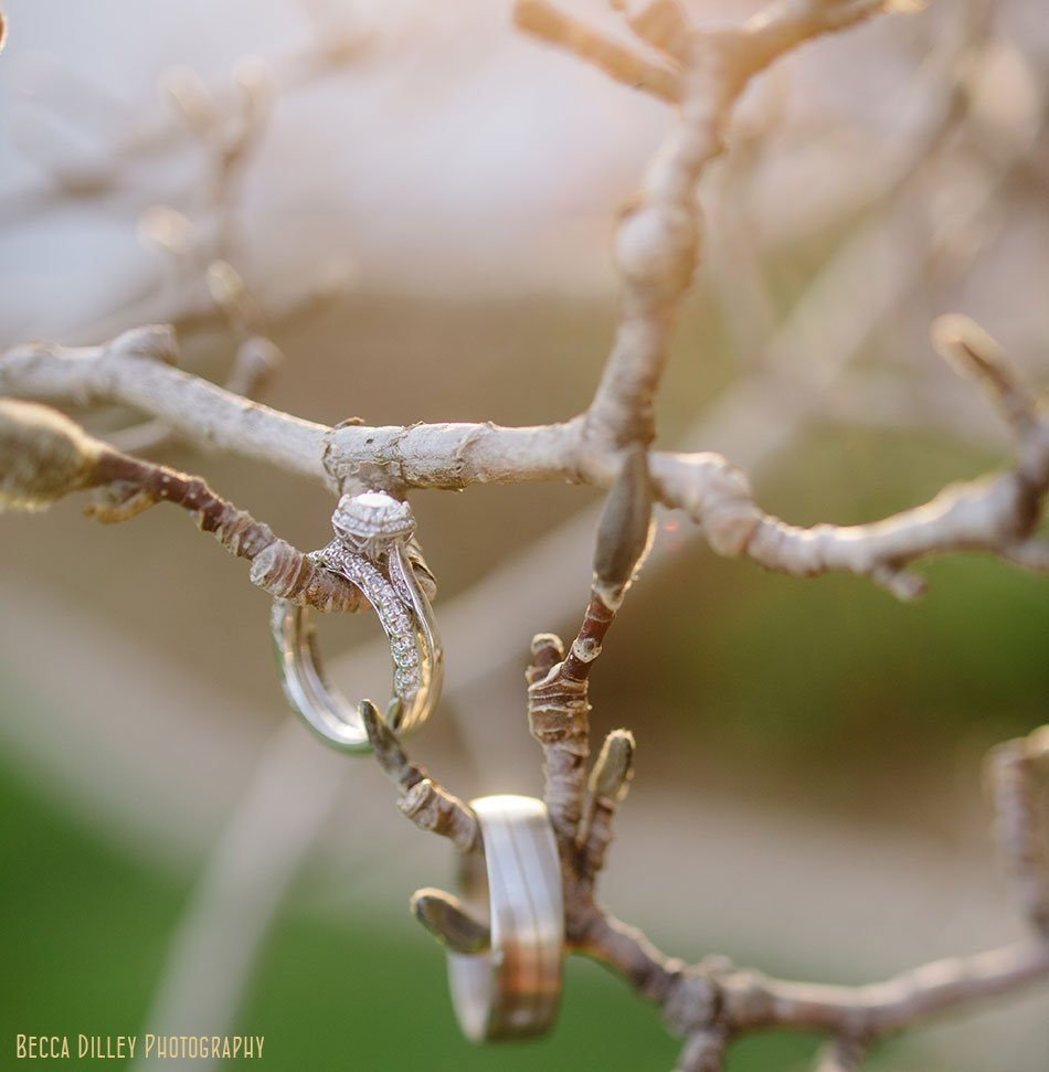 wedding rings on branches at sun set Windsor Country Club wedding Madison Wi