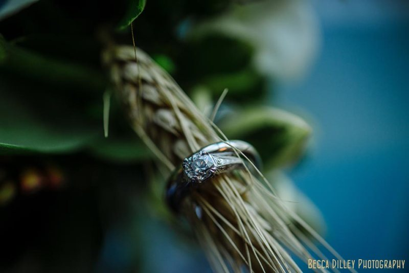 wedding rings on wheat stalks wa frost wedding st paul mn photographer