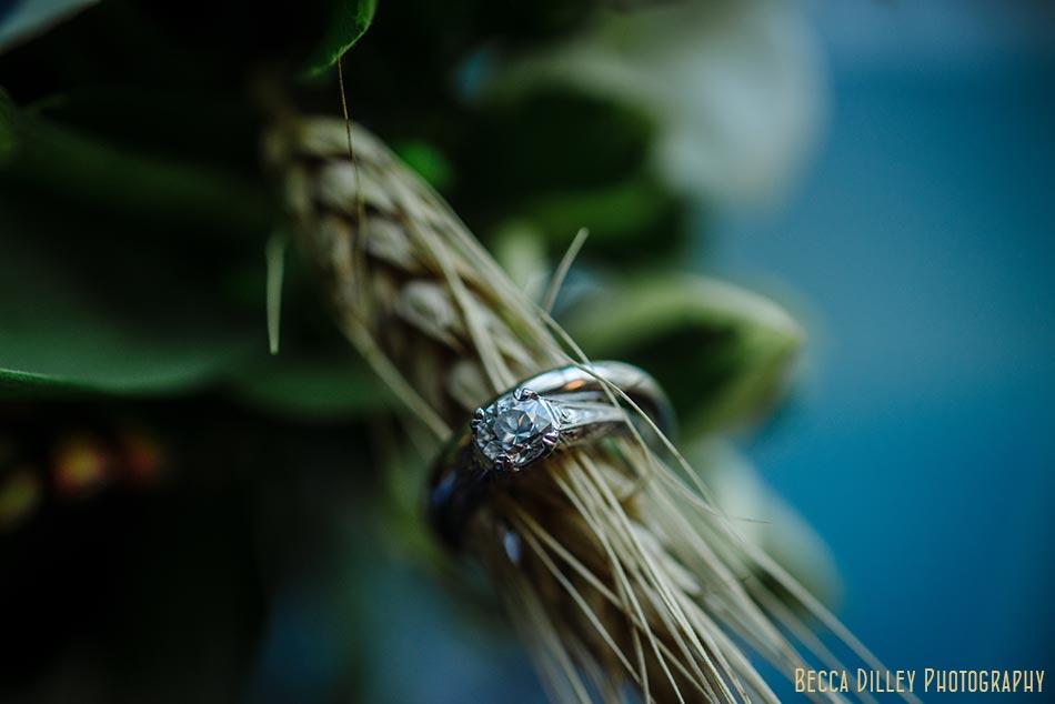 wedding rings on wheat stalks wa frost wedding st paul mn photographer
