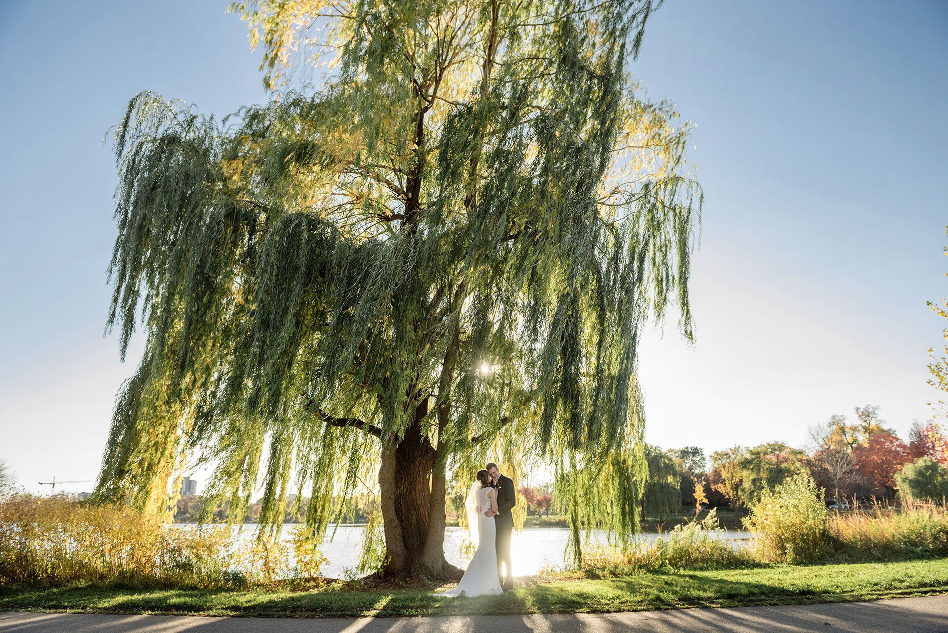 best minneapolis wedding photographer mn images willow tree with sun