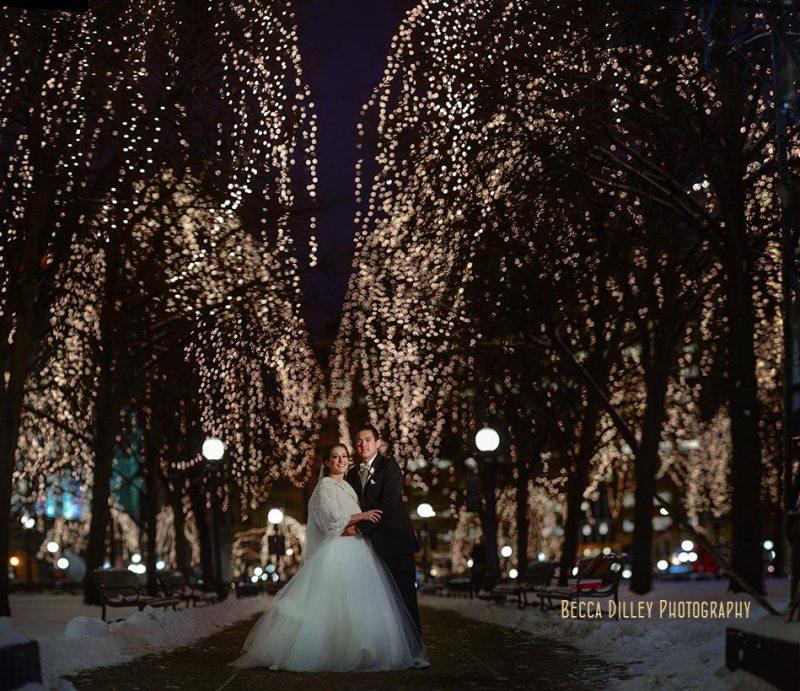panorama St Paul Hotel winter wedding mn