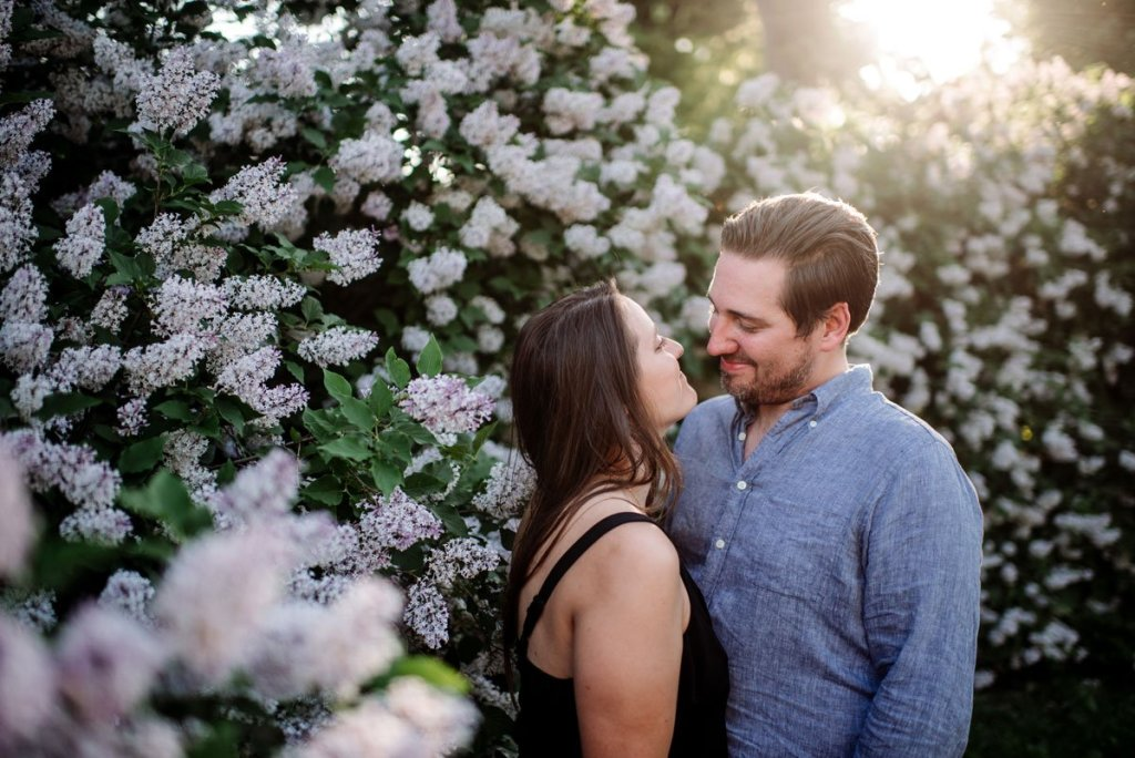 article about happy engagement photos with this portrait of couple by lilac blooms with sun setting behind them