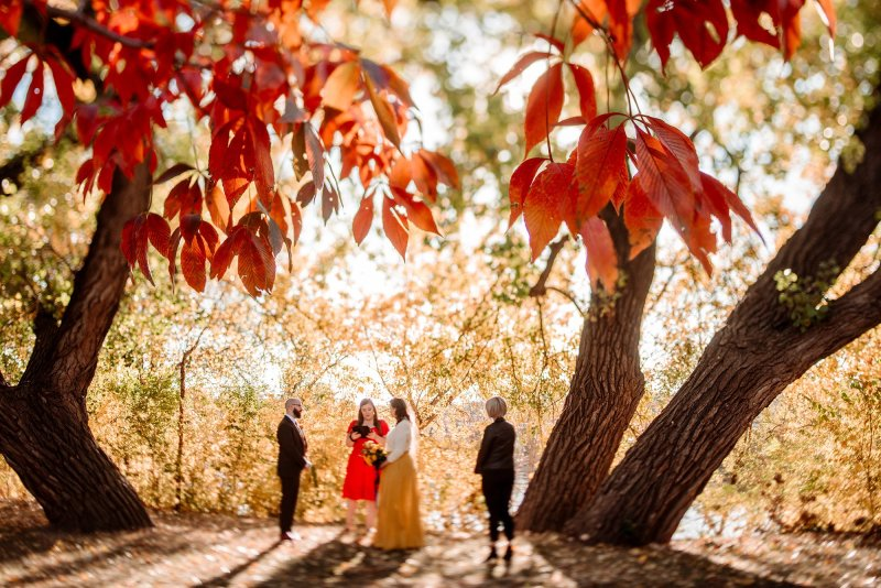 elopement in minneapolis park in northeast with fall leaves