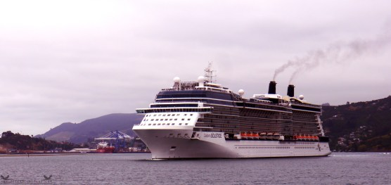 Celebrity Solstice Cruise Ship, Exiting Port Chalmers, Dunedin, New Zealand at approx. 5:30pm, 08/12/14.