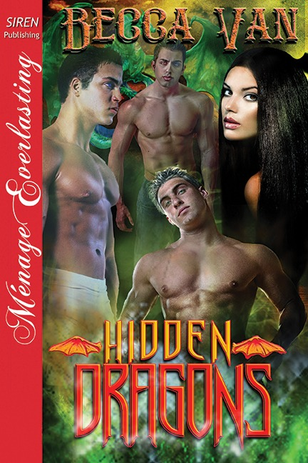 Hidden Dragons 1 – Blurb