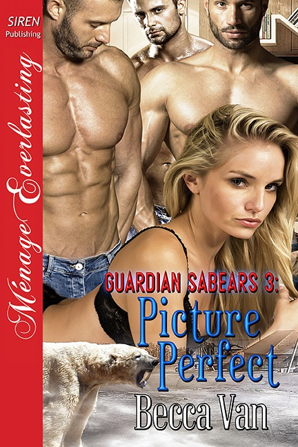 Guardian Sabears 3: Picture Perfect – Blurb