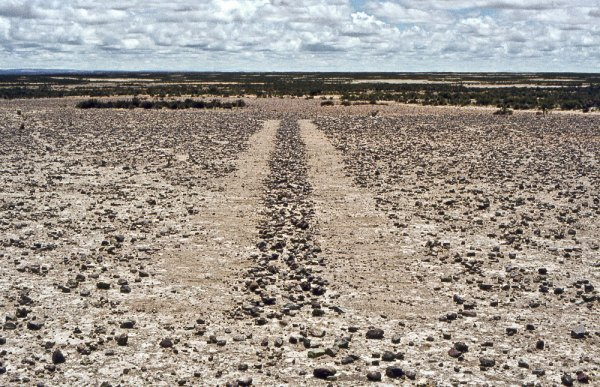 Richard Long, A Line in Bolivia, 1981