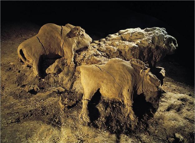 tuc d'audoubert bison