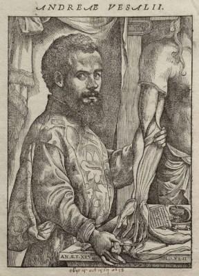 Portrait of Andreas Vesalius from 1543.